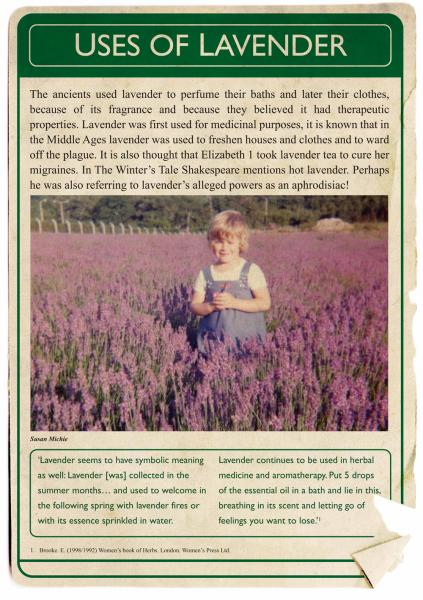 August 2013. The Lavender Project. Poster 3.